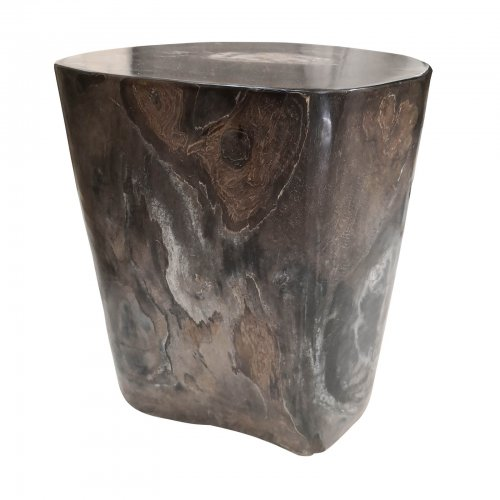 Two Design Lovers Dark Petrified Wood Side Table