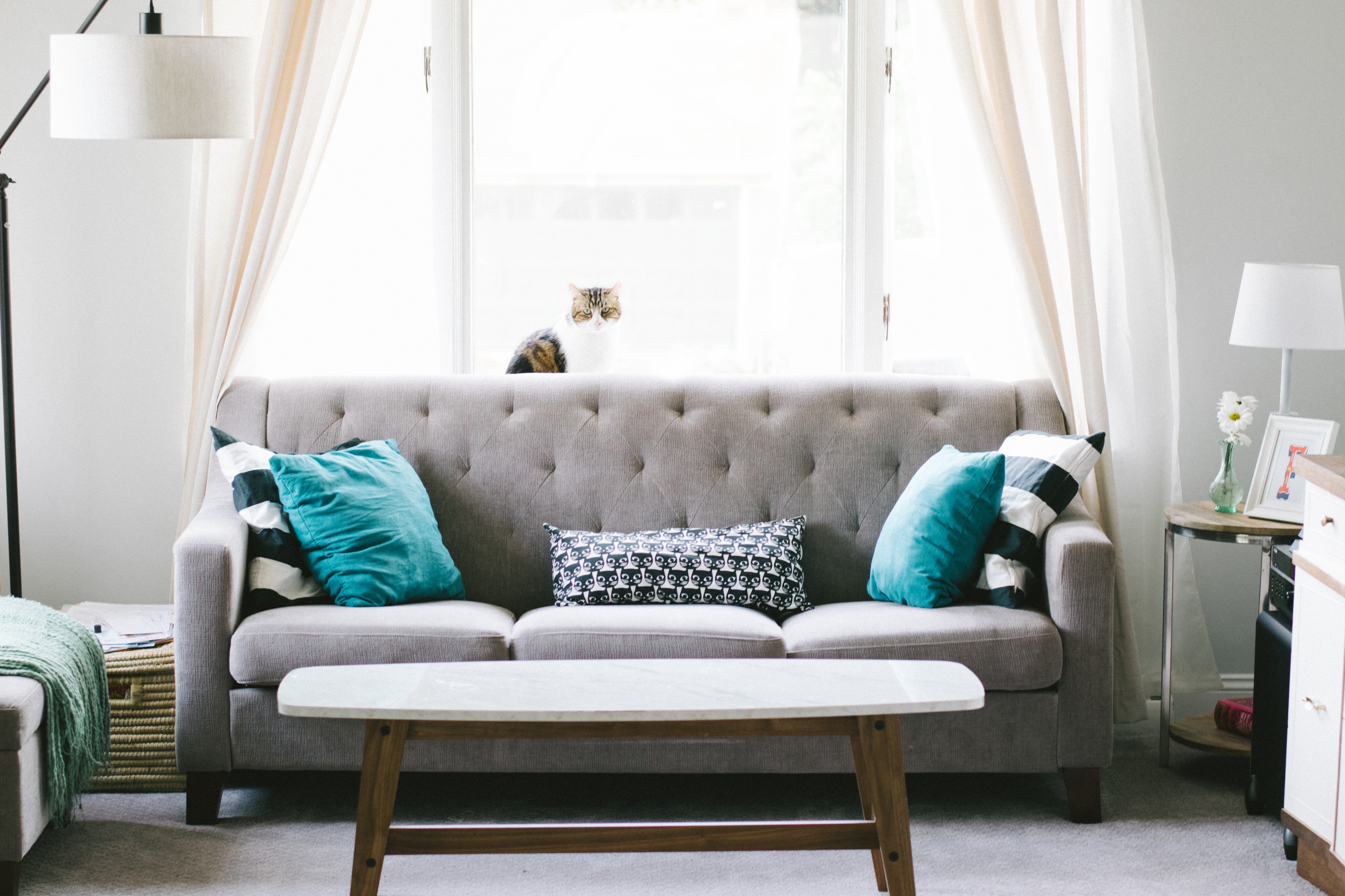 Living room with grey 3-seater sofa and turquoise cushions