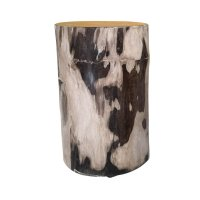 Two Design Lovers light coloured petrified wood side table