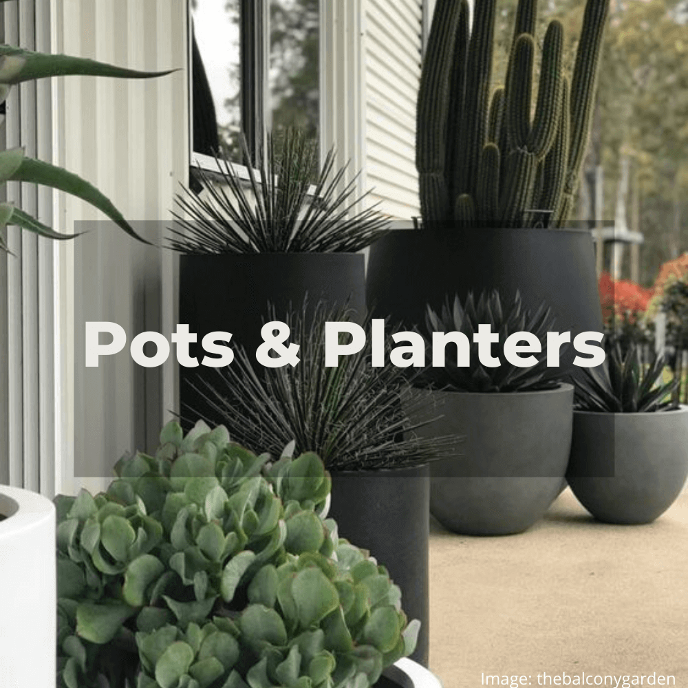 Two Design Lovers designer Accessories Pots & Planters category