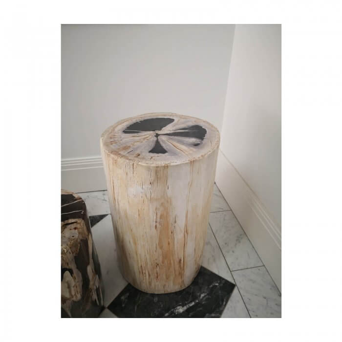 Petrified wood block side table