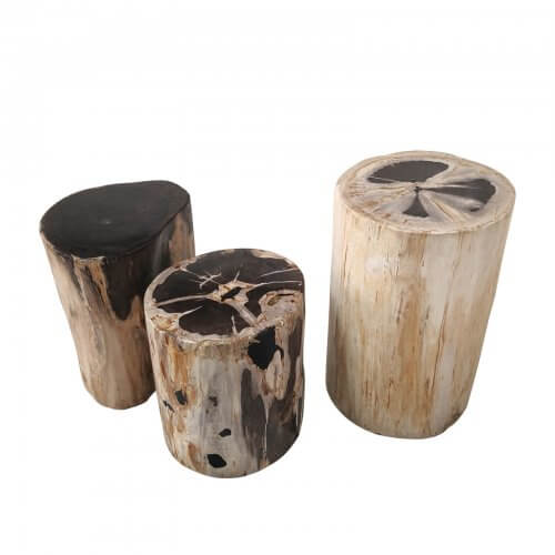 Petrified wood block side table
