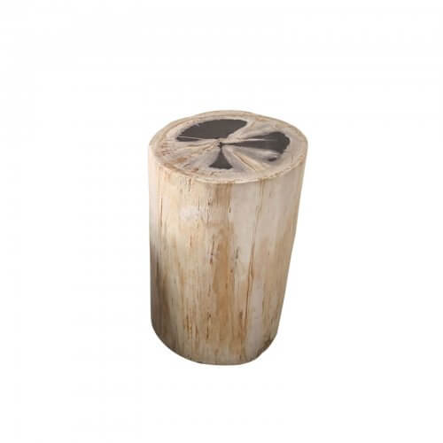 Petrified wood side table light brown