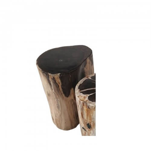 Petrified wood side table mid brown